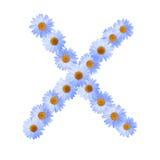 Daisy Letter blu X Immagine Stock