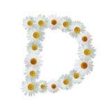 Daisy Letter D Immagini Stock
