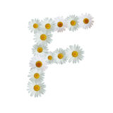 Daisy Letter F Royalty Free Stock Images
