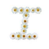 Daisy Letter I Stock Photo