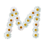 Daisy Letter M Stock Images