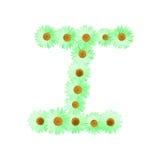 Daisy Letter verde I Immagini Stock