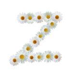 Daisy Letter Z Stock Images