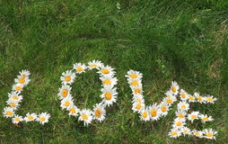 Daisy Love. Love Spelled Out in Daisy Blossoms on a Grassy Field Stock Photos