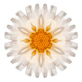 Daisy Mandala Flower Kaleidoscopic Isolated op Wit royalty-vrije stock afbeelding