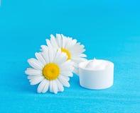 Daisy moisturizer Stock Images