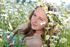 Daisy mood Stock Images