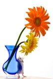daisy mysz zdjęcia stock