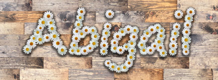 Daisy Name Abigail Wood Background. Name made from real daisy flowers on wood background Stock Image