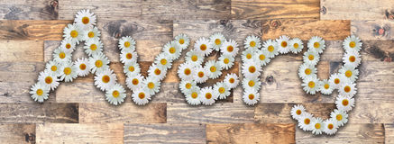 Daisy Name Avery Wood Background. Name made from real daisy flowers on wood background Royalty Free Stock Photo