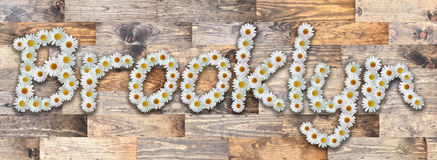 Daisy Name Brooklyn Wood Background Photo stock