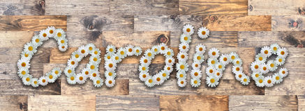 Daisy Name Caroline Wood Background Imagen de archivo