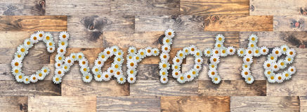 Daisy Name Charlotte Wood Background. Name made from real daisy flowers on wood background Stock Images