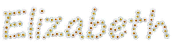 Daisy Name Elizabeth. Name made out of real daisies isolated from background Stock Photography