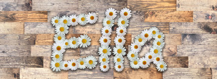 Daisy Name Ella Wood Background. Name made from real daisy flowers on wood background Stock Photos