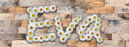 Daisy Name Eva Wood Background. Name made from real daisy flowers on wood background Royalty Free Stock Images