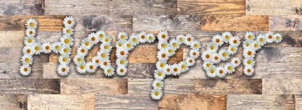 Daisy Name Harper Wood Background. Name made from real daisy flowers on wood background Stock Image
