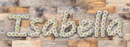 Daisy Name Isabella Wood Background. Name made from real daisy flowers on wood background Royalty Free Stock Image