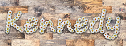 Daisy Name Kennedy Wood Background. Name made from real daisy flowers on wood background Stock Image