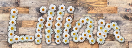 Daisy Name Lillian Wood Background. Name made from real daisy flowers on wood background Stock Photography