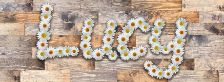Daisy Name Lucy Wood Background. Name made from real daisy flowers on wood background Royalty Free Stock Photos