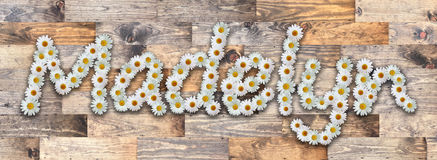 Daisy Name Madelyn Wood Background. Name made from real daisy flowers on wood background Royalty Free Stock Image