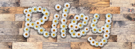 Daisy Name Riley Wood Background. Name made from real daisy flowers on wood background Royalty Free Stock Photography