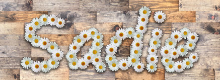Daisy Name Sadie Wood Background. Name made from real daisy flowers on wood background Royalty Free Stock Images