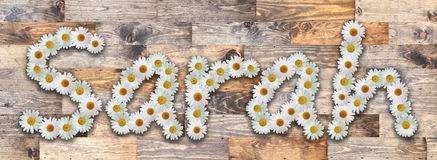 Daisy Name Sarah Wood Background. Name made from real daisy flowers on wood background Royalty Free Stock Images