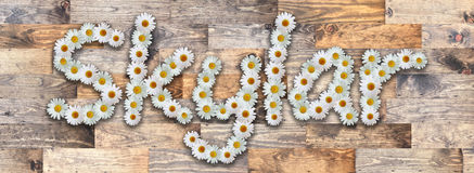 Daisy Name Skylar Wood Background. Name made from real daisy flowers on wood background Royalty Free Stock Images