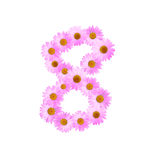 Daisy Number Eight rosada stock de ilustración