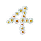 Daisy Number Four Images libres de droits