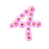 Daisy Number Four cor-de-rosa Imagens de Stock