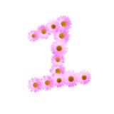 Daisy Number One rosada Fotografía de archivo libre de regalías