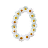 Daisy Number Zero Photographie stock