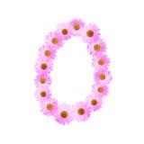 Daisy Number Zero cor-de-rosa Imagem de Stock