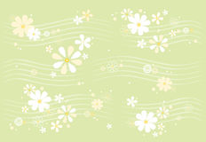 Daisy pattern Royalty Free Stock Image