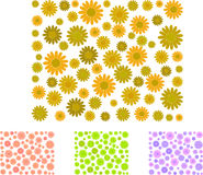 Daisy patterns. Daisy background and 3 different color versions Royalty Free Stock Images