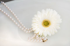 Daisy and Pearls Royalty Free Stock Photography