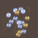 Daisy postcard Royalty Free Stock Photos