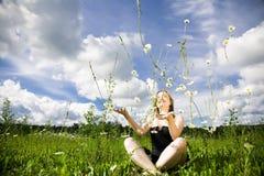 Daisy Rain Royalty Free Stock Images