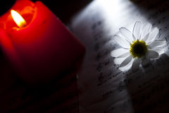 Daisy and Red Candle on Music Notes Sheet Royalty Free Stock Photo