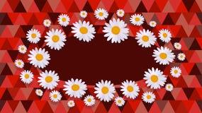 Daisy red Celebration card Royalty Free Stock Photo