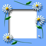 Daisy scrapbook frame Stock Image