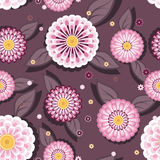 Daisy seamless. Stylish seamless background with daisies and leafs Stock Photos