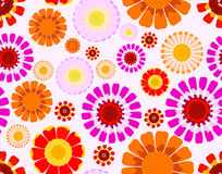 Daisy seamless background. Vector daisy of different colors seamless background Royalty Free Stock Photos