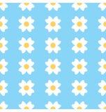 Daisy Seamless Background floral Imágenes de archivo libres de regalías