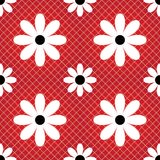 Daisy seamless background. Daisy seamless color background Royalty Free Stock Image