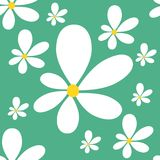 Daisy seamless pattern. Vector illustration. Eps 10 Stock Photo