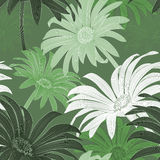Daisy seamless pattern. Vector green daisy seamless pattern Royalty Free Stock Images